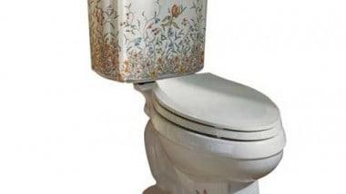 Review: Kohler English Trellis Portrait Toilet