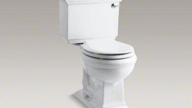 Review: The Kohler Memoirs Two Piece Toilet