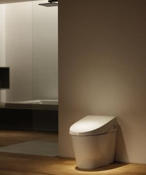 Are Expensive Toilets Really Worth Their Price? We think so!