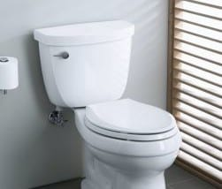 Kohler Toilets Reviews: Find The Best